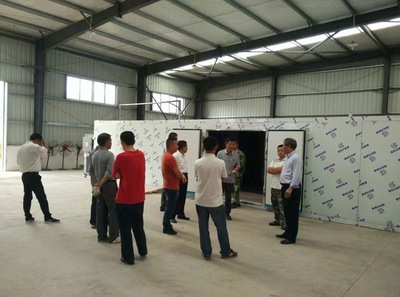 THE CAMELLIA OLEIFERA SEED DRYER PROJECT IN QINGYUAN CITY.